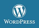 Wordpress100px